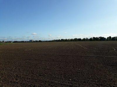 Sankt Augustin - Meindorf: Hier hinter den Büschen: Die A59. Sie soll achtspurig ausgebaut werden. Okay. Aber der Bund muss bei solchen Vorhaben auch besseren Lärmschutz und Wiedervernetzung von Grün- und Erholungsräumen realisieren.