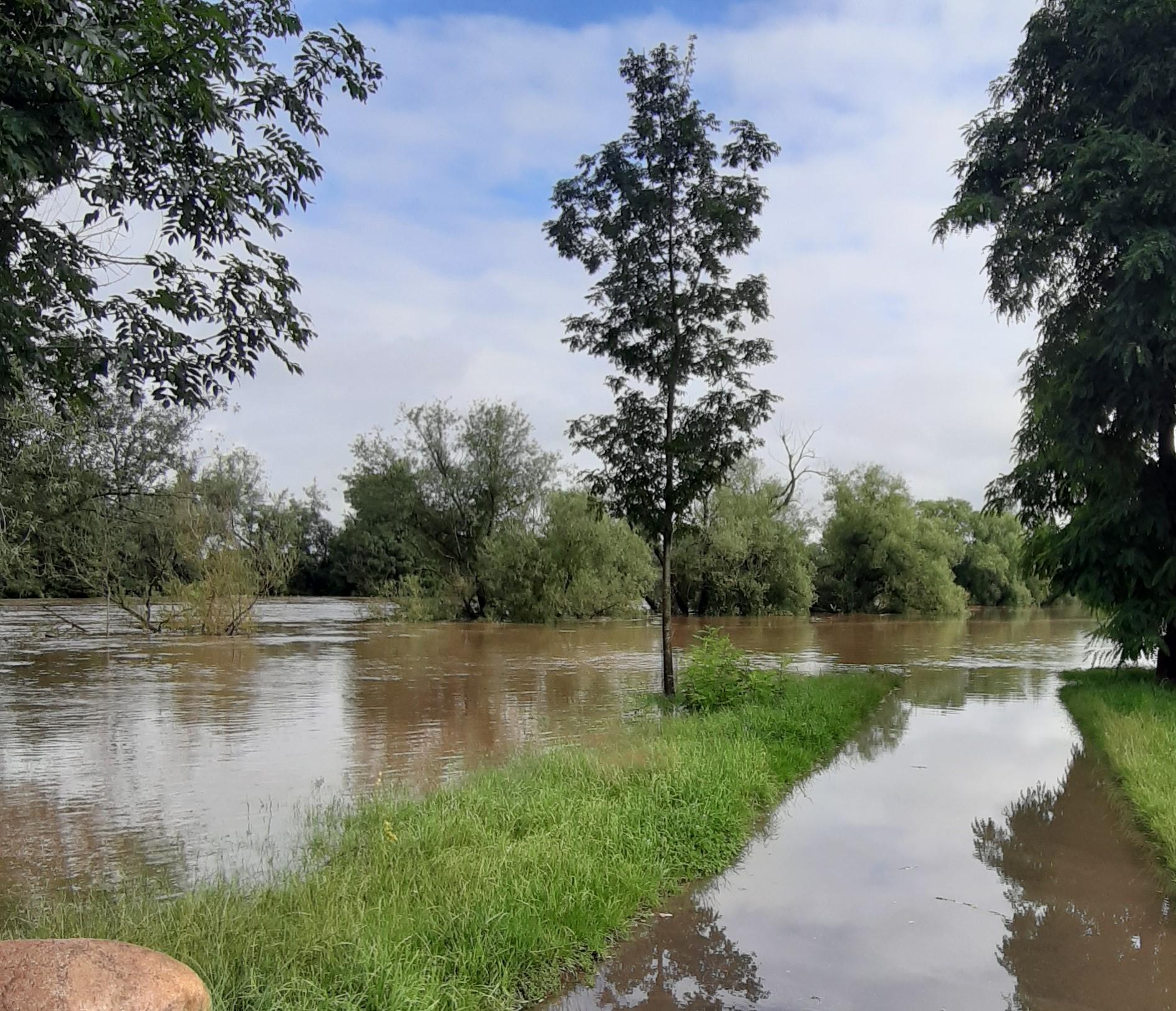 1 Monat nach der Flut – Diskussionspapier zu Schlussfolgerungen aus der Hochwasser-Katastrophe Juli 2021